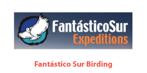 FantásticoSur Expeditions